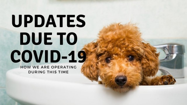 Updates-due-to-covid-19